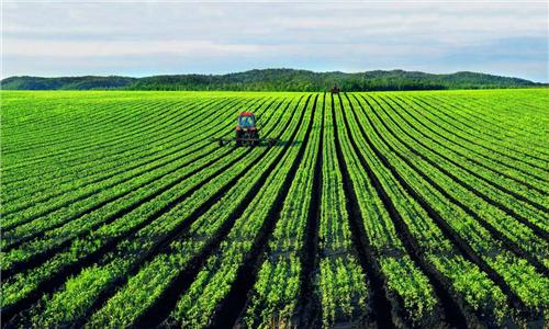 重磅|营销决定农产品生死!看美国、日本、法国的玩法