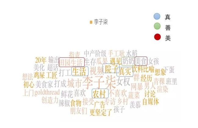 李子柒的口碑营销研究