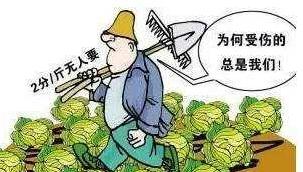 让农产品不再滞销,这5大销售渠道一定有适合你的!