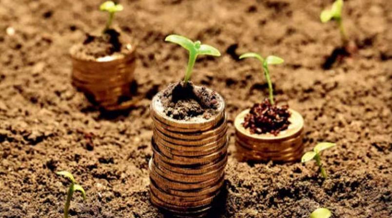 土流网陶慧龙:下一步计划在全国放款3个亿