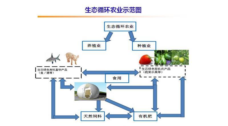 """生态循环农业报告:如何在""""生态循环农业""""中淘金"""