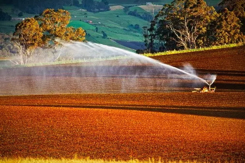大知识|国外流行的八种新型农业模式值得中国借鉴!