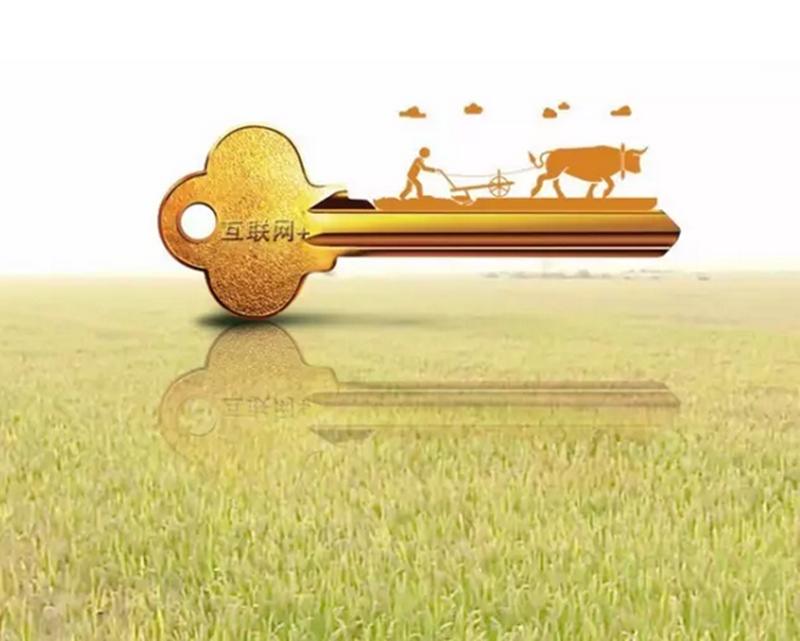 想赚大钱!农业老板必须学习:6种战略模式、5大经营模式