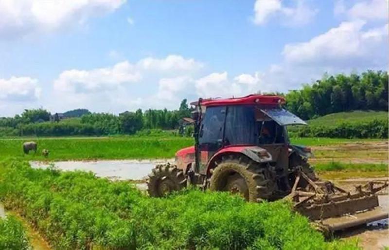 梳理|风靡农业圈的创新模式,每一个都值得借鉴!(建议收藏)