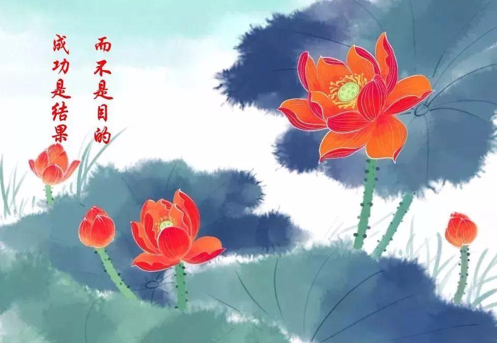 【夜读】成功三大定律:荷花定律、金蝉定律、竹子定律