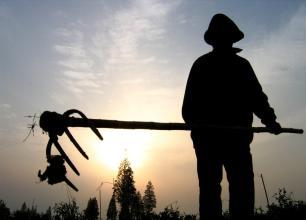 """想成为农业经理人需要哪些""""资质""""?"""