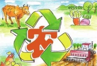 探究!中小型农业企业该如何发展?