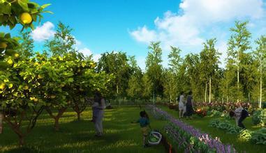 生态农业如何助力农业供给侧结构性改革?