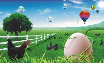 农业数字化竟然是农产品可追溯的前提条件?看他怎么说