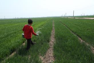一周回顾 农业产业10大事件盘点(09.0125-09.18)
