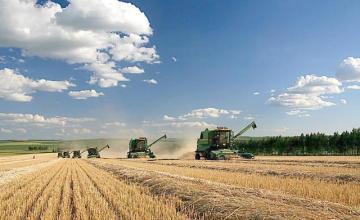 """农业缺钱怎么办?N多""""钱途""""等你挑"""