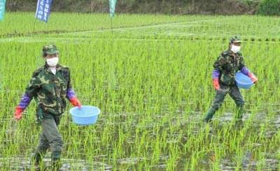 农业部:造就培养高素质农业生产经营者队伍