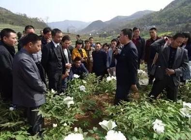 """三农日报 农垦""""十三五""""出台;236个中国农民不抵1个美国农民;休闲农业如何跨界?"""