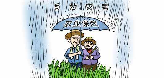 未来!国家发力农业保险服务功能