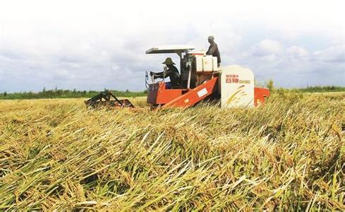 农业企业走出去很难,但走出去市场很大