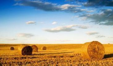 到2020年,农业部提了这2大目标,每一个都与你有关