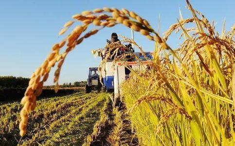 农业部长韩长赋:中国农业怎么搞?机遇在哪里?前景如何?