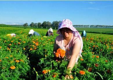 潘建成:加快农业提质 促进农民增收农村增绿