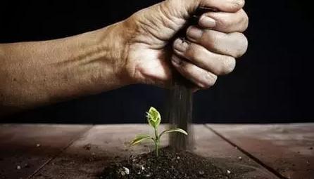 做农业怎样才能吸引投资?请牢记这四点!