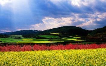 特色小镇+现代农业:一号文件催生新的商业模式
