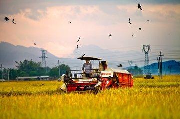 农业十大风口:互联网农业、光伏农业、第六产业....都是千亿级别