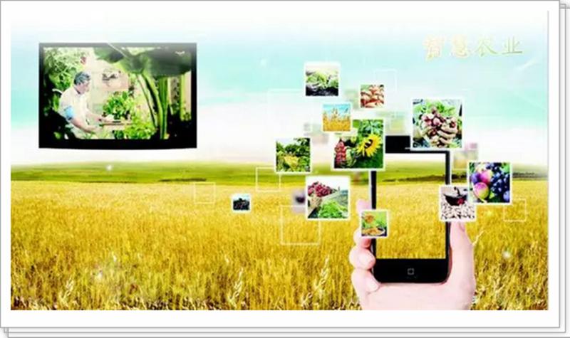 发展智慧农业,这4项技术是关键