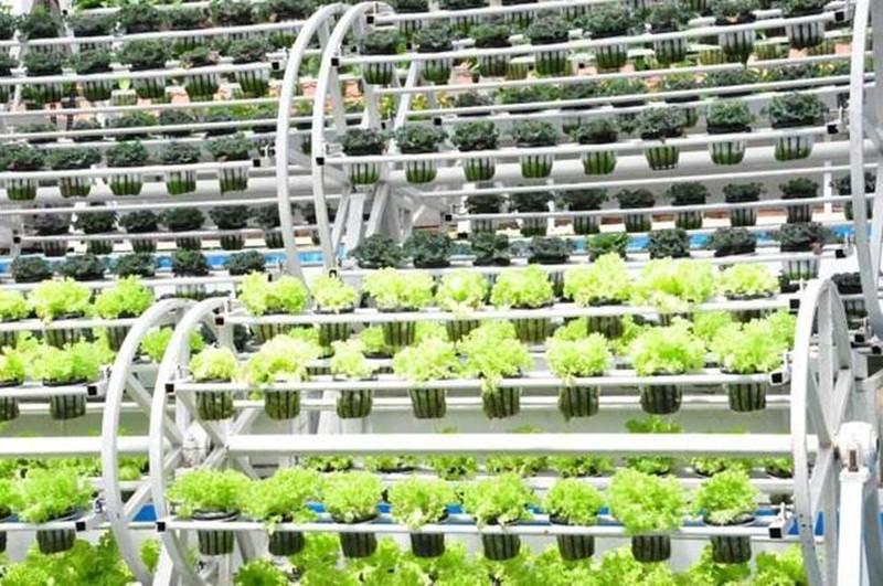 太空农业、分子农业,颠覆60后、70后认知的高科技农业