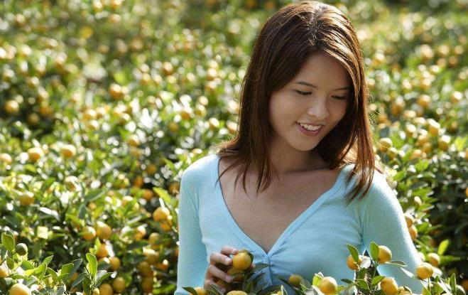 大干货|新加坡农业5大创新玩法:90%是被逼出来的!