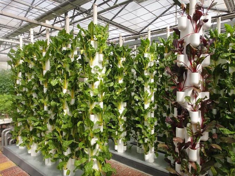 精准农业、智慧农业是现代化中国设施农业的未来