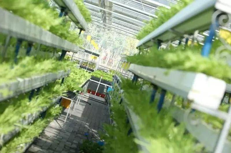 智慧农业+模式+产业链模式