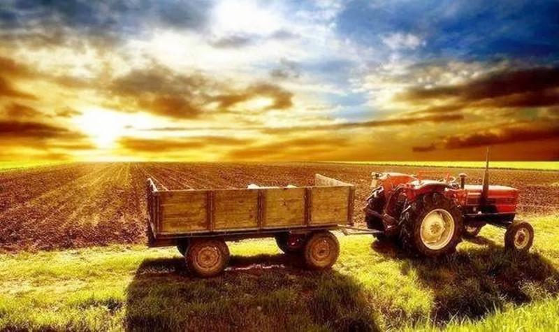 注意这些人的话!未来中国农业的趋势竟然是这几个
