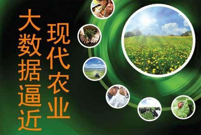 """路林欣:未来互联网将引领""""智慧农业""""进入一个新时代"""