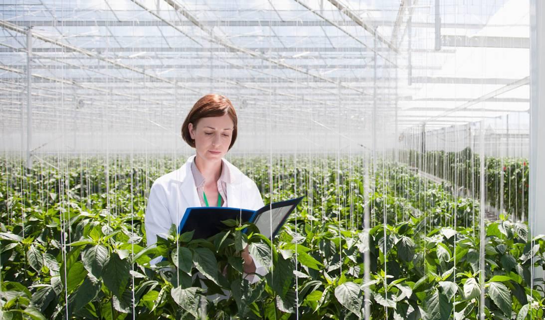 创业小黑板|跑赢时代的加速器:智慧农业!