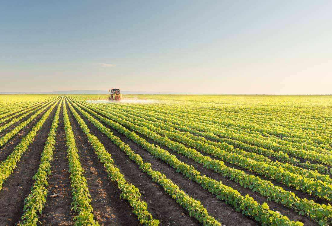 重磅|看京东、金沙江、百果园、顺丰如何淘金智慧农业
