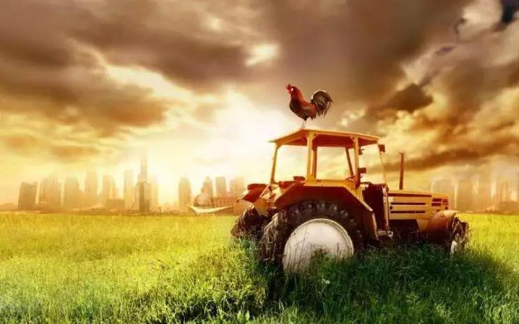 """「农业行业观察沙龙」""""智""""见未来沙龙活动嘉宾、地址及流程公布"""