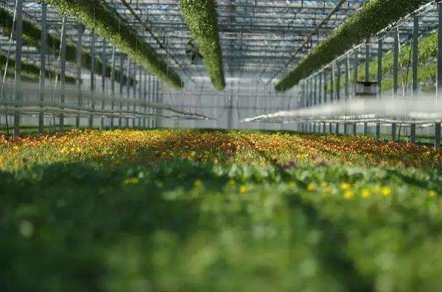 土流流转迎来资本化高潮;农业人才短缺:智慧农业、农产品加工业