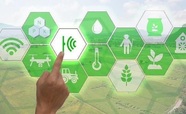 智慧农业是如何利用农业大数据搭建农产品溯源系统的?