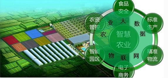 """数字经济破解农业三矛盾,助力""""智慧农业""""加速实现"""