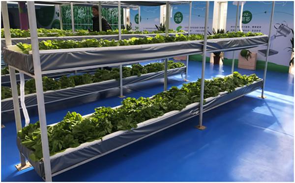 三农日报|院士称转基因技术值得大范围推广;我国智慧农业产业规模超4000亿元