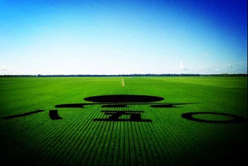 该醒醒了!规模早已破4000亿,智慧农业+时代来了