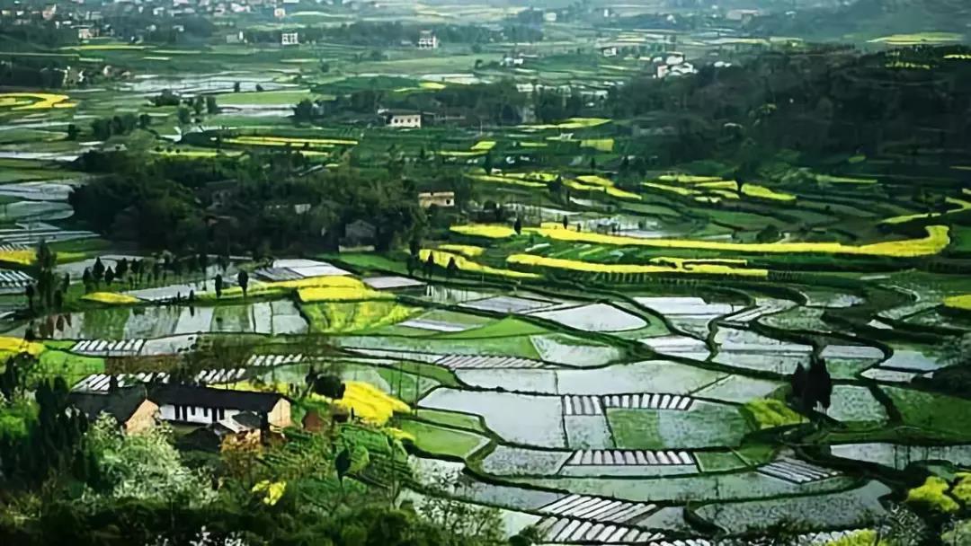 新模式|智慧农业三大方向与三大发展模式