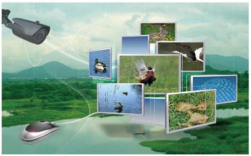 可视化将成为智慧农业发展所趋