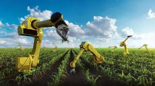 三农日报|报告预测:未来10年AI引领农业;我国将停止无公害农产品认证