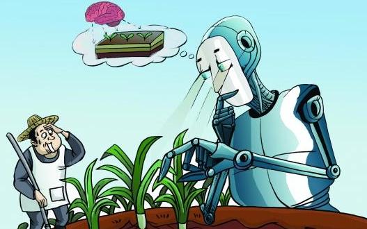 "AI变身农业""医生""问诊作物病虫害"