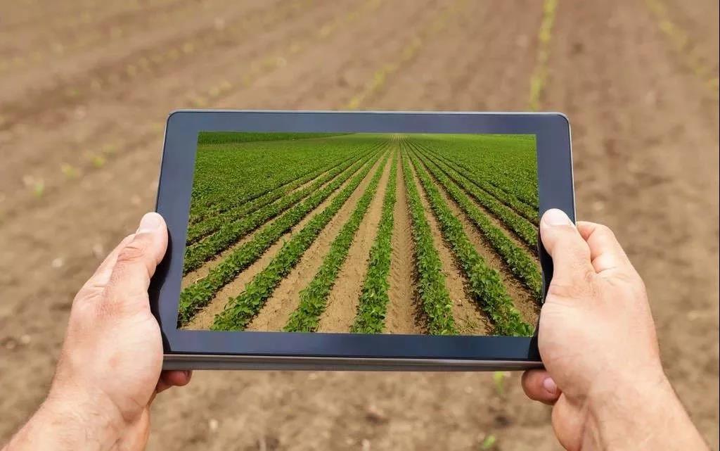 耕地减少,人口增加,食品安全问题频频,智慧农业能否拯救中国农业