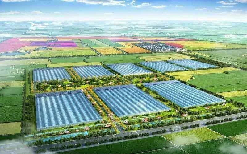 资本看好智慧农业|智慧农业领域公司融资情况分析
