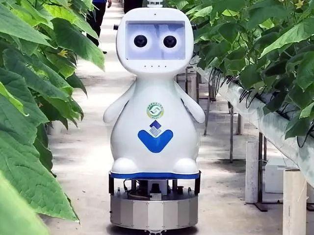三农日报|国家呼吁金融机构支持养殖户;中国智慧农业正处于初级阶段