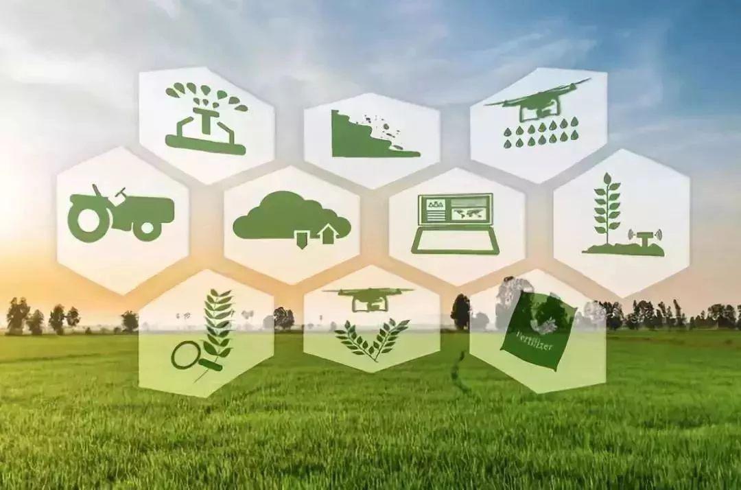 案例分析 | 巨头如何做智慧农业,中化农业认为技术和线下服务缺一不可