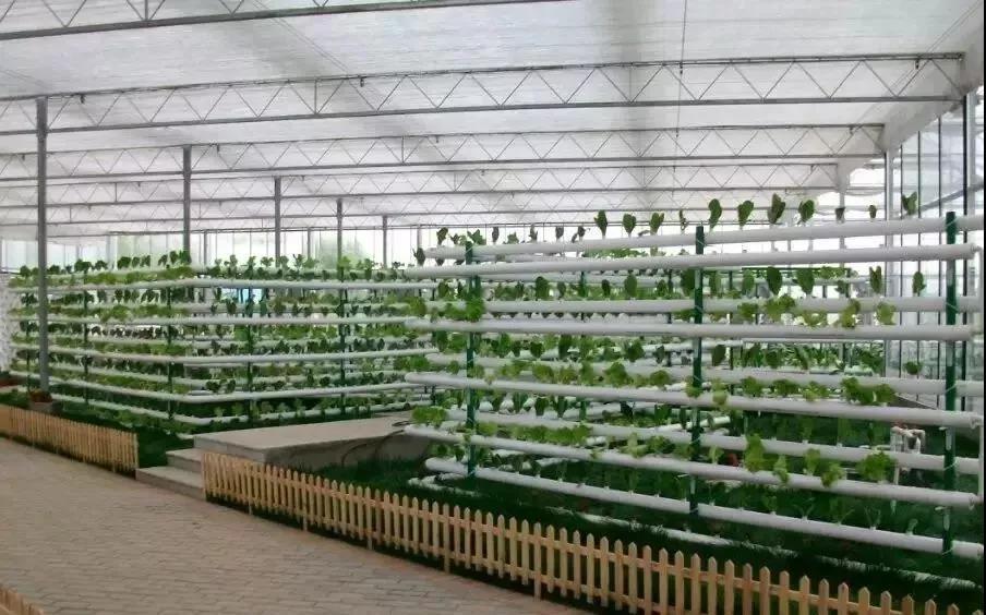 模式研究|新农业样板:设施农业、无土栽培、精准农业(建议收藏)