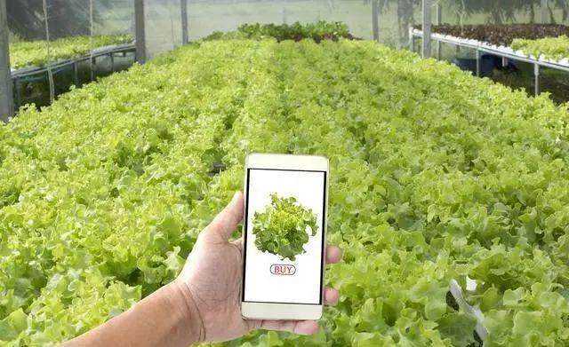重磅分析|解析智慧农业四大应用场景及未来趋势